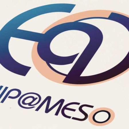 Logo equi@meso